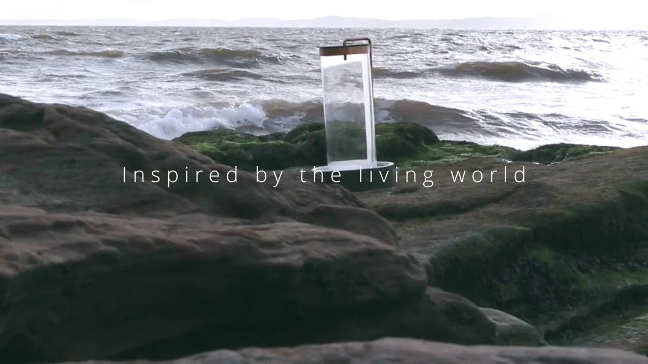 EcoAqua | Bring a piece of nature into your home